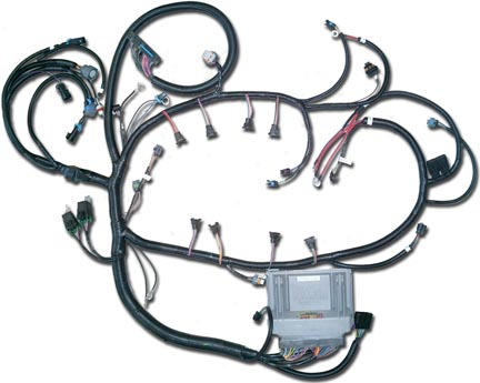 01_6A LS1 direct fit custom gm lsx vortec ltx engine wiring harness 93 GMC Sierra Fuse Panel at soozxer.org
