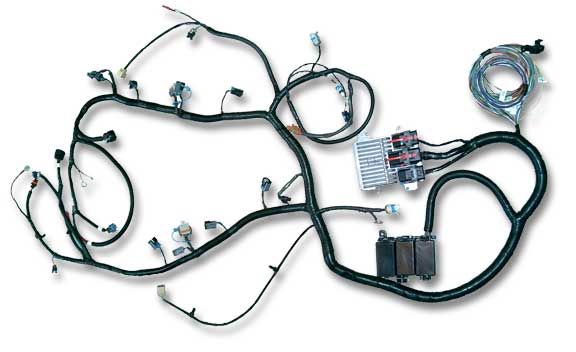 LS2 SA 58x ls2, ls3, ls7 stand alone engine harness for e38 ecu current ls3 wiring harness and computer at fashall.co