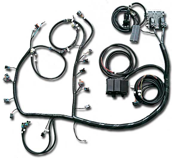 LS2_PKG 58x ls2, ls3, ls7 stand alone engine harness for e38 ecu current  at gsmx.co